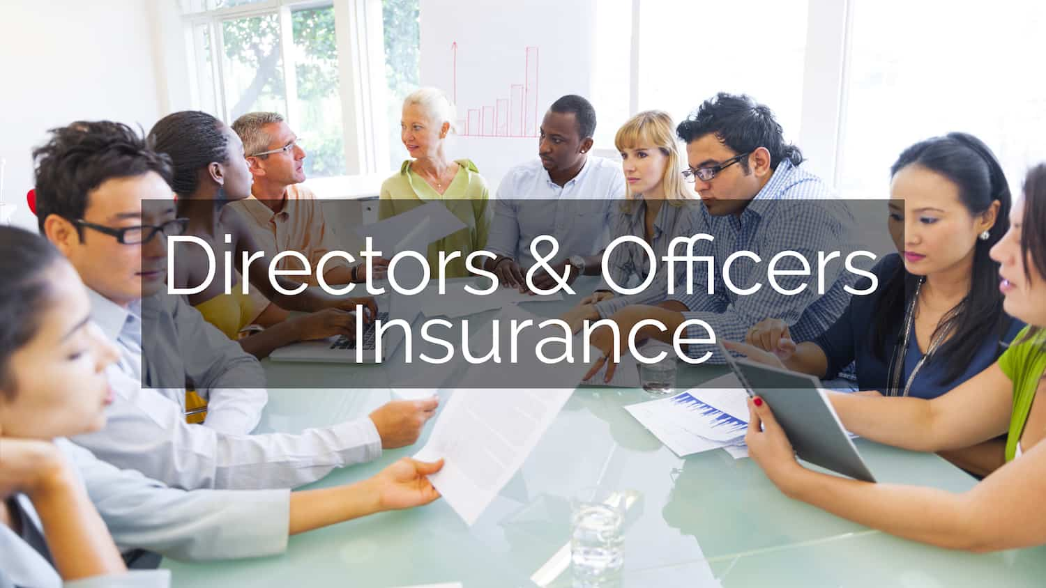 Director's and Officer's Insurance